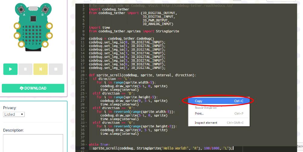 CodeBug – Activity Tethering Codebug With Python